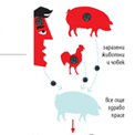 infographics/18.jpg