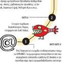 infographics/31.jpg